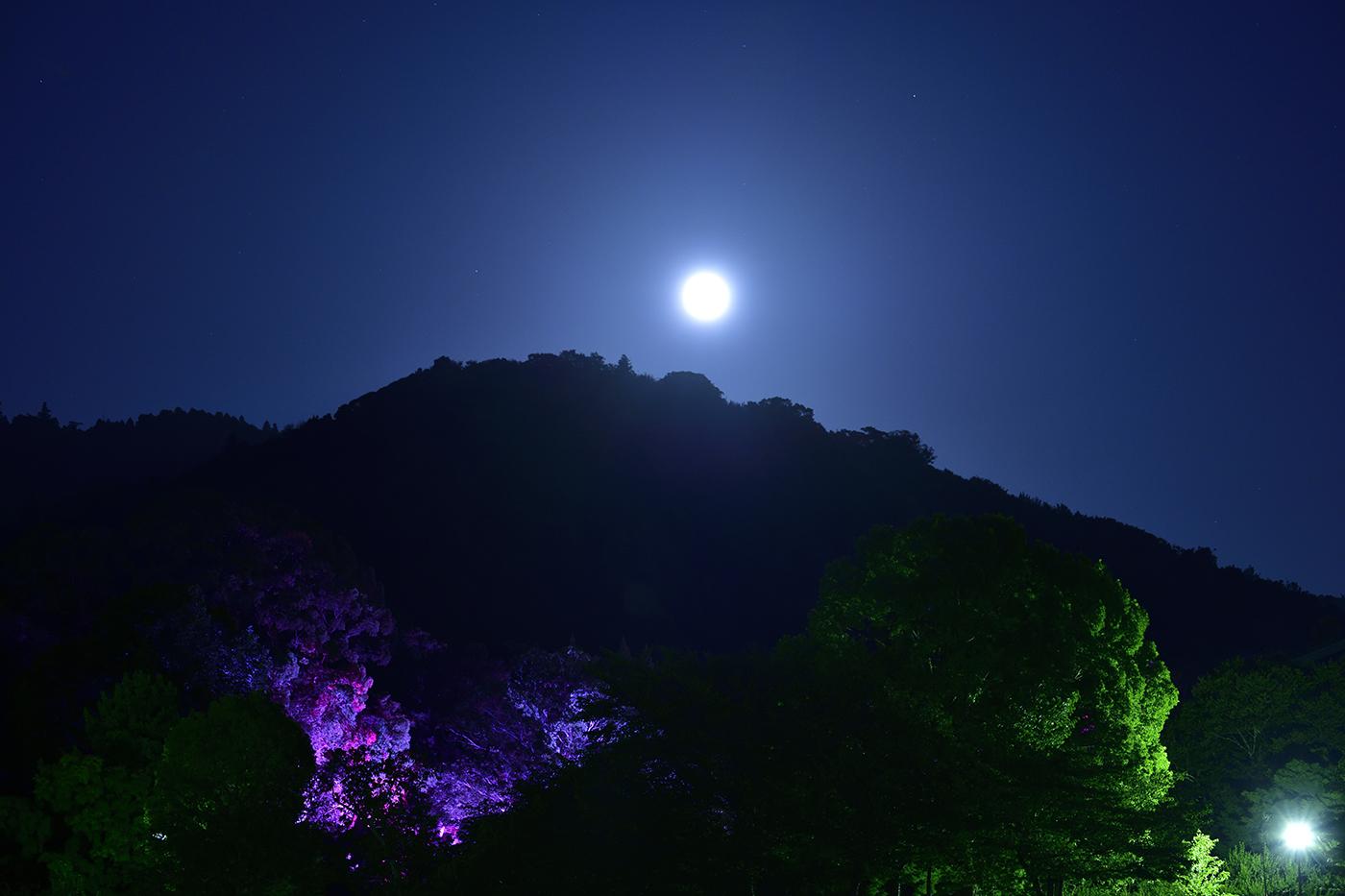 御蓋山と月(撮影:桑原英文)